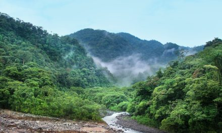 Voyage en Amérique centrale, à la découverte d'une destination hors pair