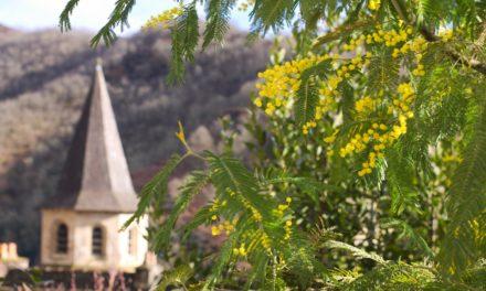 Tourisme au cœur du village de Najac