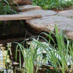Comment créer un bassin naturel ?